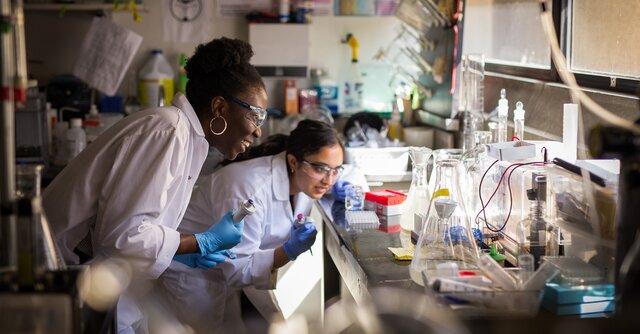برترین دانشگاههای کانادا در زمینه تحقیقات